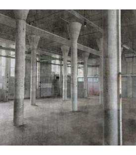 Обои Rasch Factory IV 429725
